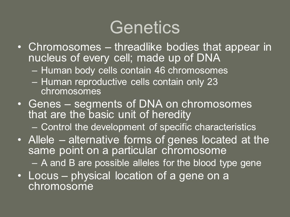 Genetics Chromosomes – threadlike bodies that appear in nucleus of every cell; made up of DNA –Human body cells contain 46 chromosomes –Human reproduc