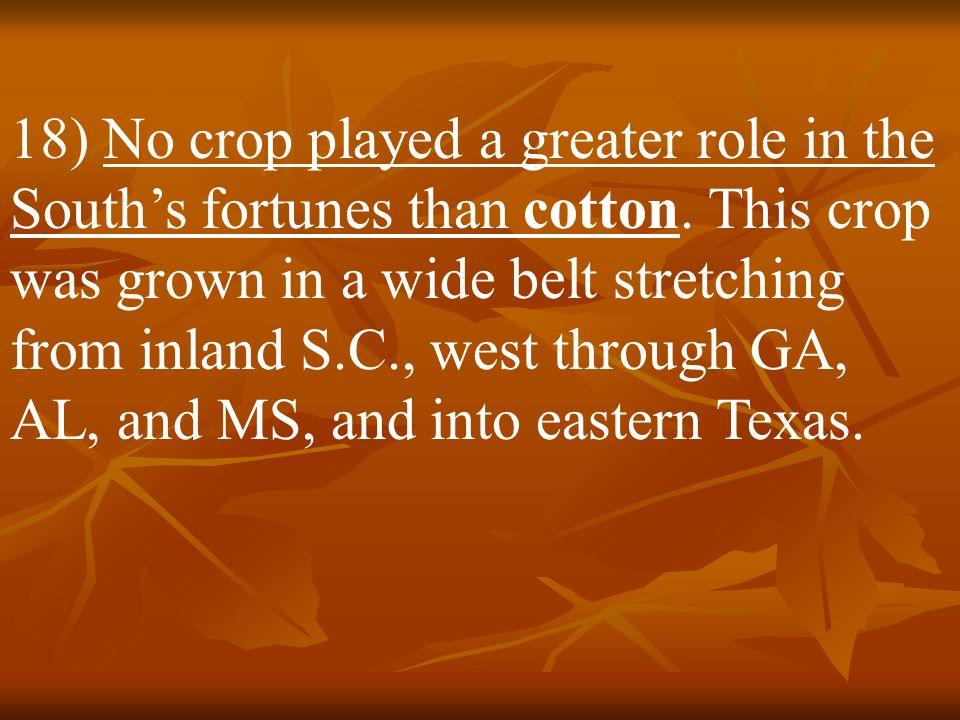 17) The South thrived on the production of several major cash crops. In the upper Southern states farmers grew tobacco. Rice paddies dominated the coa