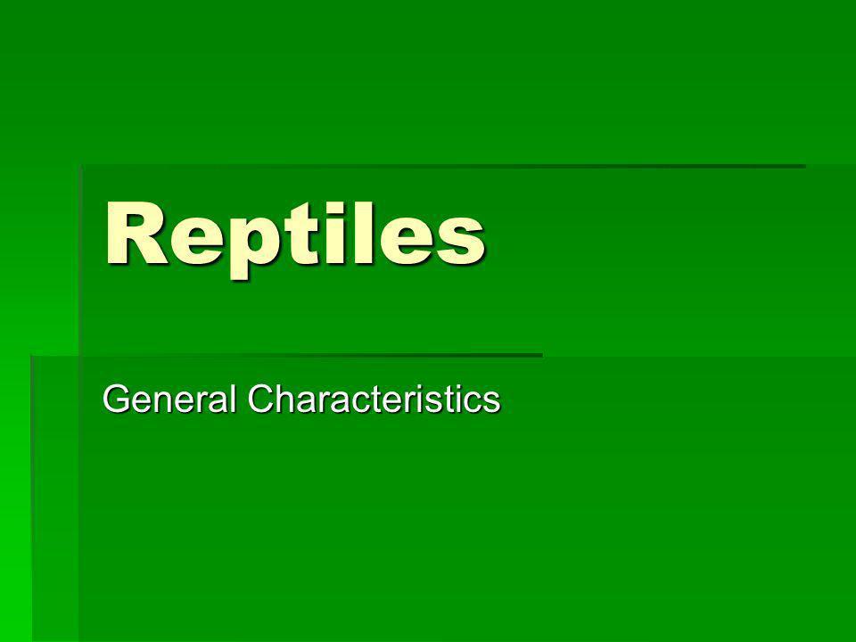 Reptiles General Characteristics