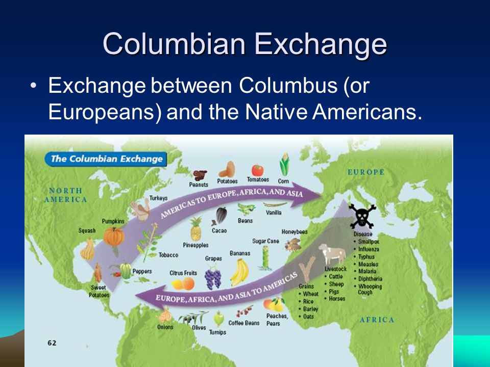 Columbian Exchange Exchange between Columbus (or Europeans) and the Native Americans.