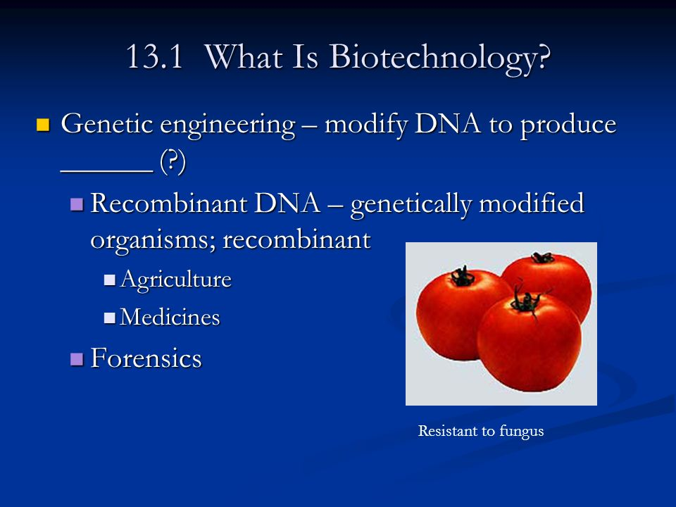 13.1 What Is Biotechnology? Genetic engineering – modify DNA to produce ______ (?) Genetic engineering – modify DNA to produce ______ (?) Recombinant