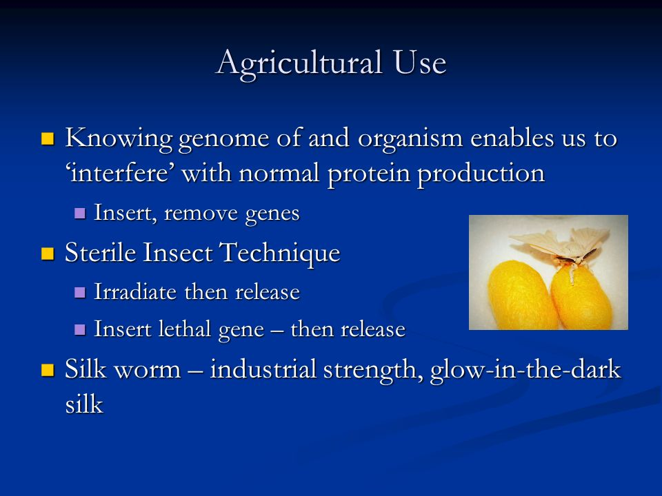 Agricultural Use Knowing genome of and organism enables us to interfere with normal protein production Knowing genome of and organism enables us to in
