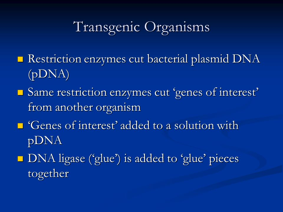Transgenic Organisms Restriction enzymes cut bacterial plasmid DNA (pDNA) Restriction enzymes cut bacterial plasmid DNA (pDNA) Same restriction enzymes cut genes of interest from another organism Same restriction enzymes cut genes of interest from another organism Genes of interest added to a solution with pDNA Genes of interest added to a solution with pDNA DNA ligase (glue) is added to glue pieces together DNA ligase (glue) is added to glue pieces together