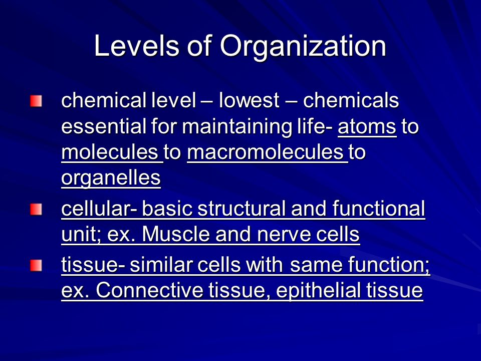 chemical level – lowest – chemicals essential for maintaining life- atoms to molecules to macromolecules to organelles cellular- basic structural and