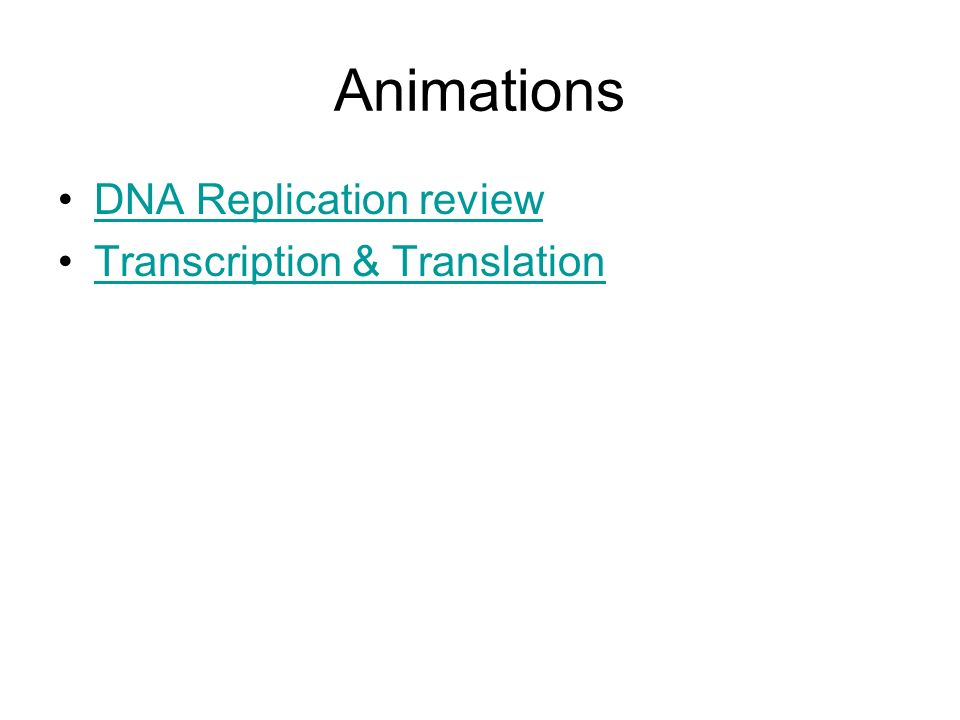 Animations DNA Replication review Transcription & Translation