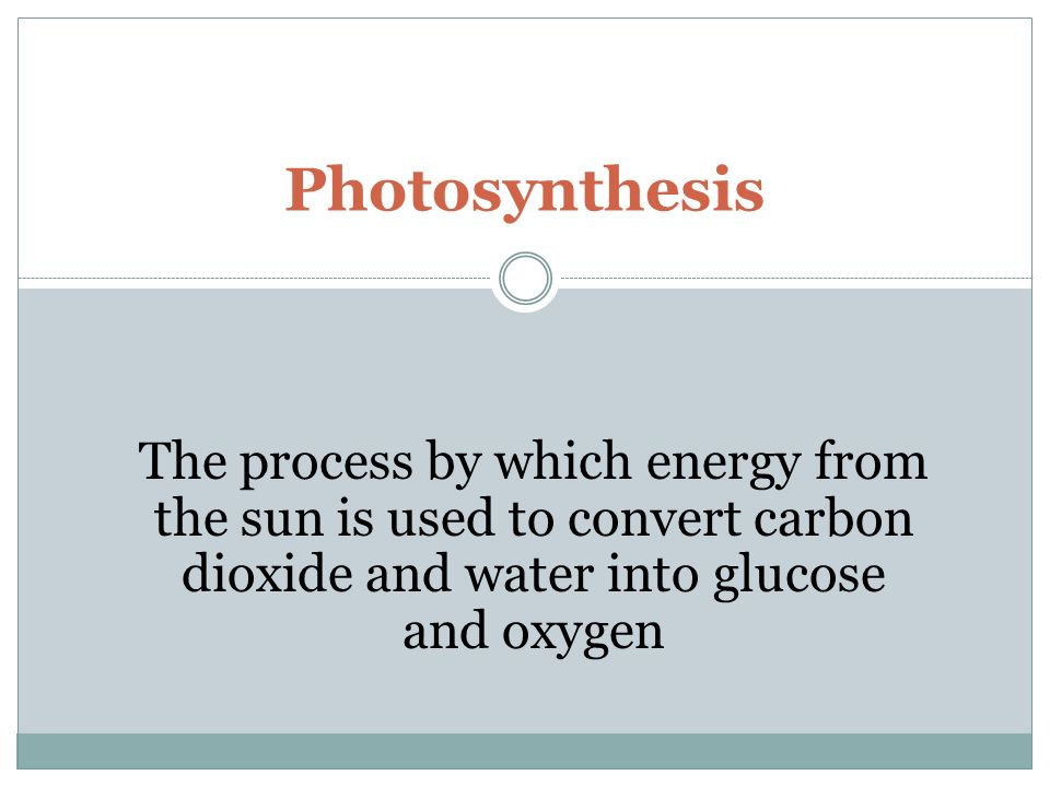 The process by which energy from the sun is used to convert carbon dioxide and water into glucose and oxygen Photosynthesis