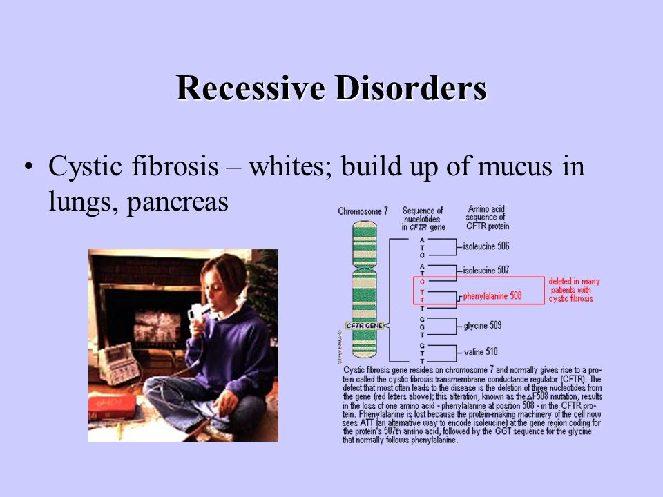 Recessive Disorders Cystic fibrosis – whites; build up of mucus in lungs, pancreas