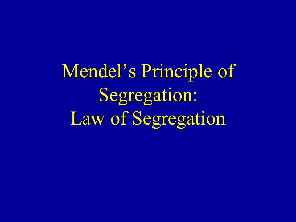 Mendels Principle of Segregation: Law of Segregation