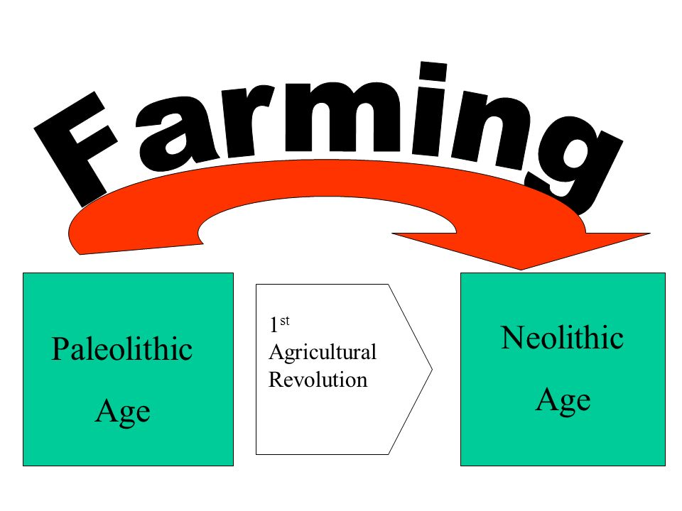Paleolithic Age Neolithic Age 1 st Agricultural Revolution