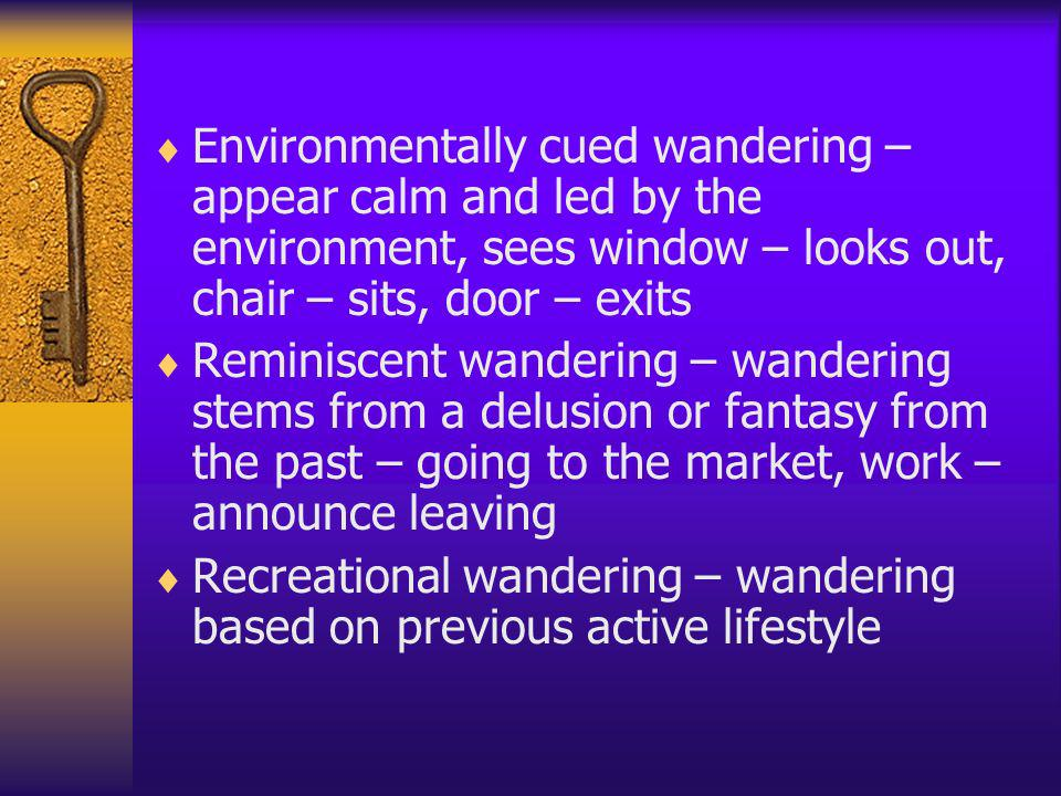 Environmentally cued wandering – appear calm and led by the environment, sees window – looks out, chair – sits, door – exits Reminiscent wandering – w