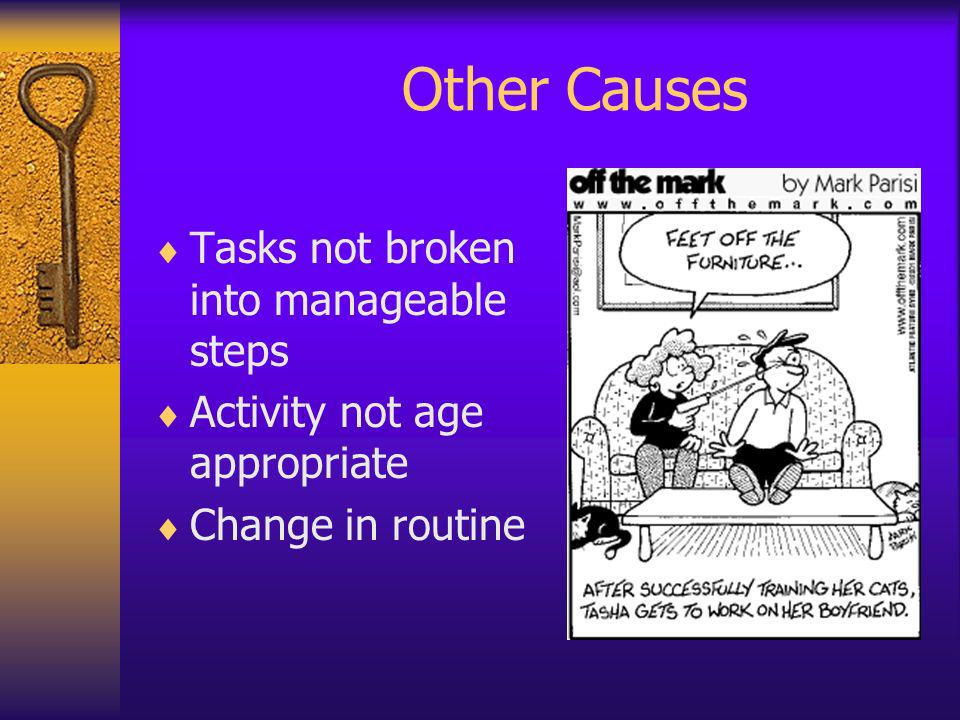 Other Causes Tasks not broken into manageable steps Activity not age appropriate Change in routine