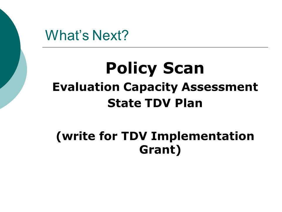 Whats Next? Policy Scan Evaluation Capacity Assessment State TDV Plan (write for TDV Implementation Grant)