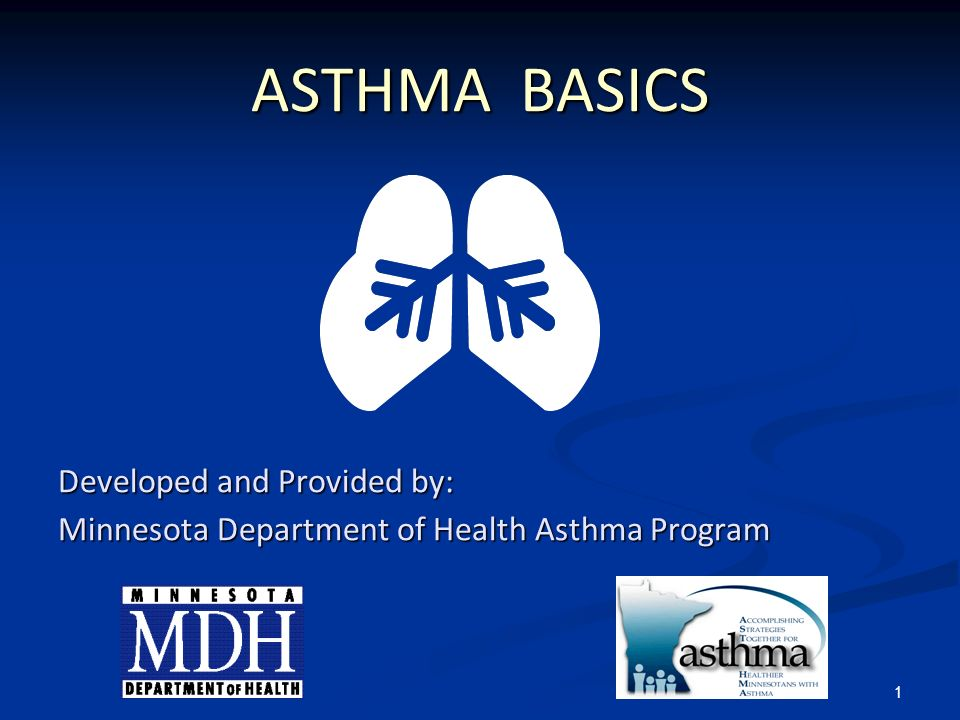 1 ASTHMA BASICS Developed and Provided by: Minnesota Department of Health Asthma Program