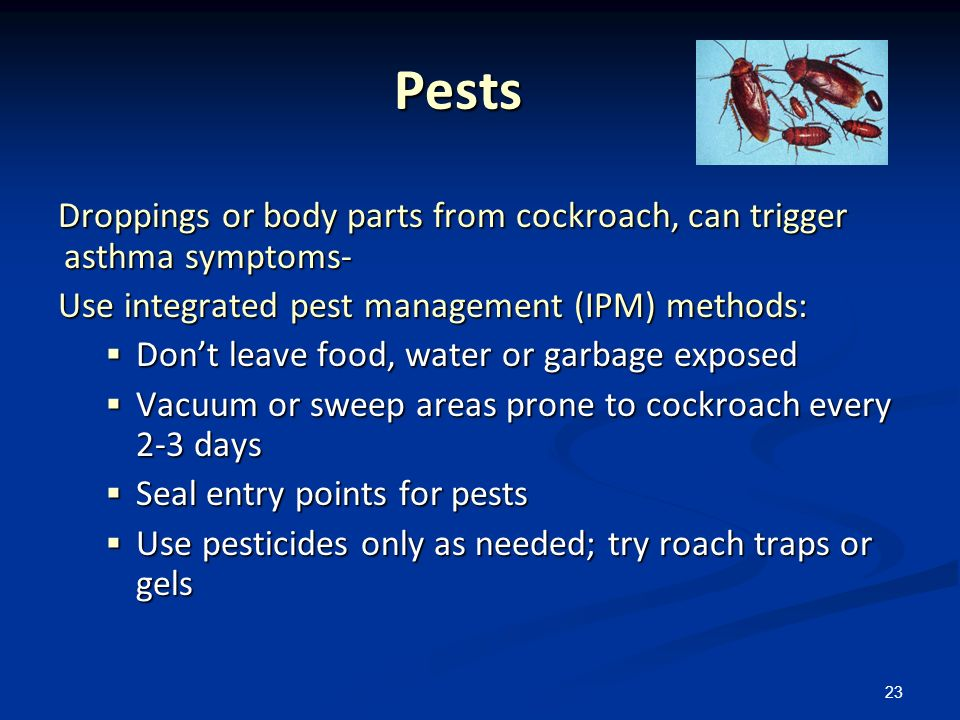 23 Pests Pests Droppings or body parts from cockroach, can trigger asthma symptoms- Use integrated pest management (IPM) methods: Dont leave food, wat