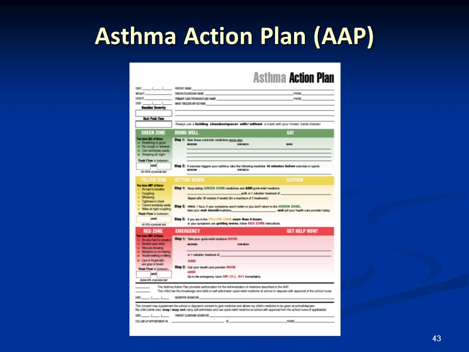 43 Asthma Action Plan (AAP)