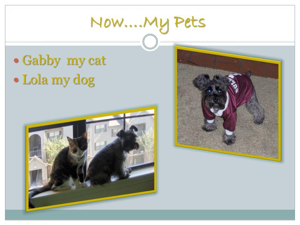 Now….My Pets Gabby my cat Gabby my cat Lola my dog Lola my dog