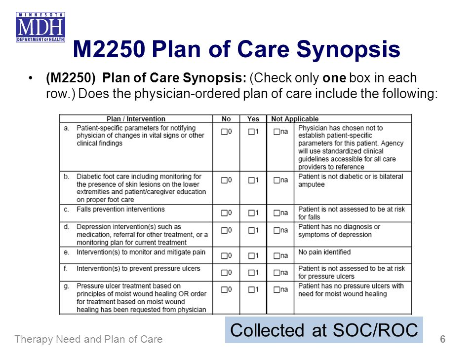 M2250 Plan of Care Synopsis (M2250) Plan of Care Synopsis: (Check only one box in each row.) Does the physician-ordered plan of care include the follo