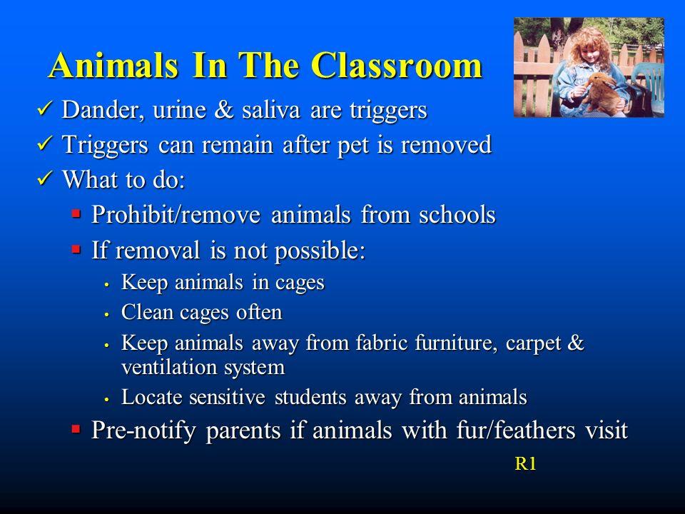 Animals In The Classroom Animals In The Classroom Dander, urine & saliva are triggers Dander, urine & saliva are triggers Triggers can remain after pe