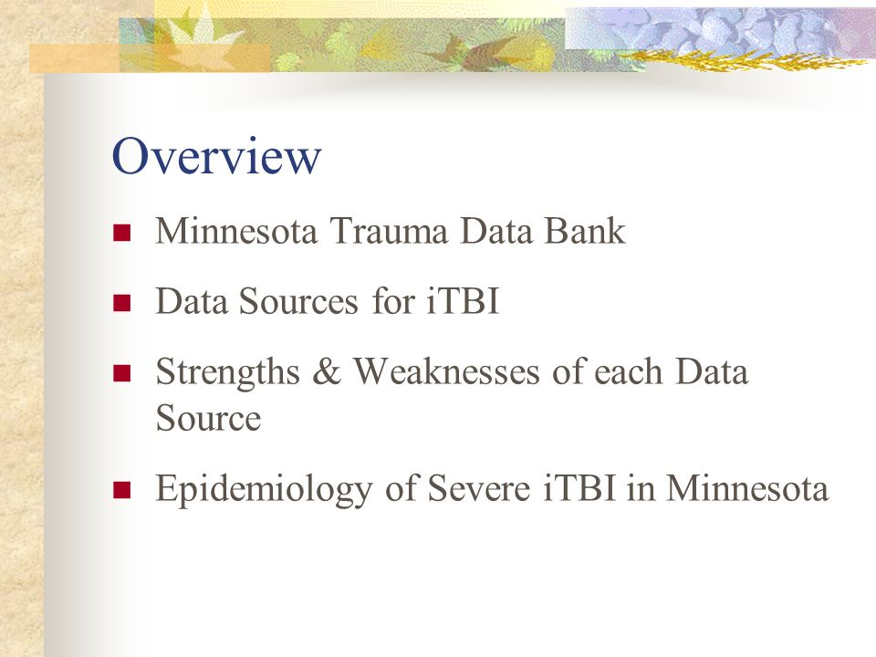 Overview Minnesota Trauma Data Bank Data Sources for iTBI Strengths & Weaknesses of each Data Source Epidemiology of Severe iTBI in Minnesota