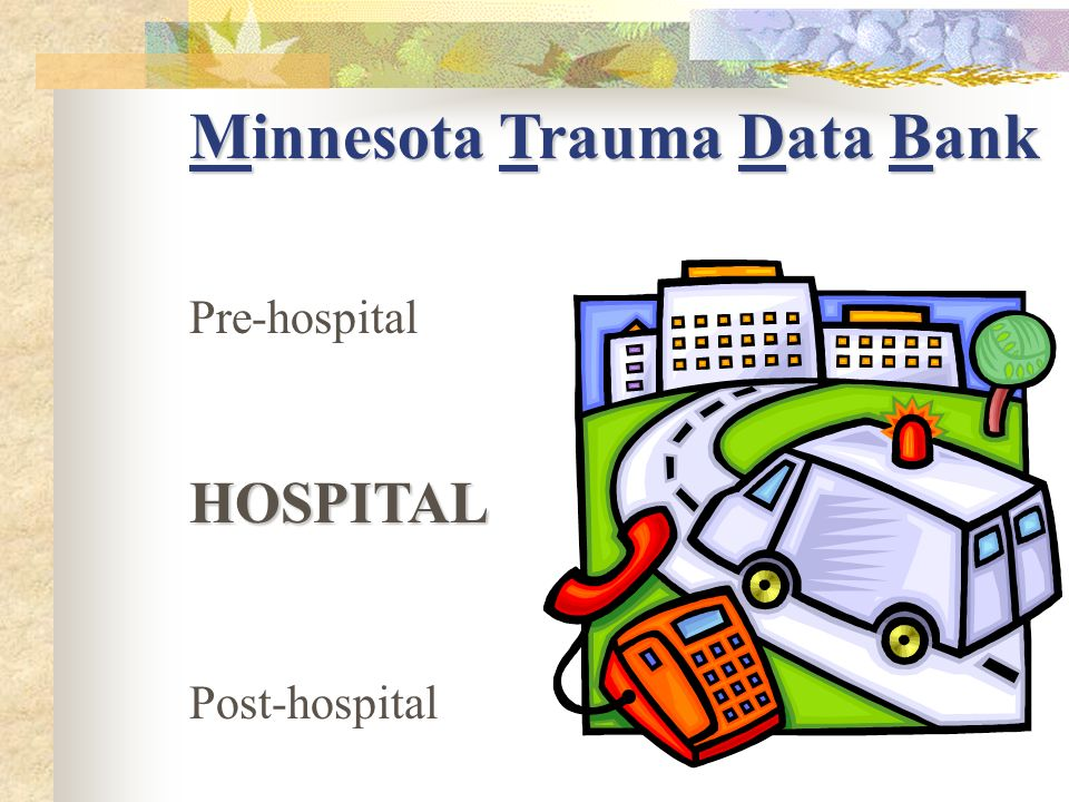 Hospital Data Codes assigned by medical records identify diagnoses, procedures, and injury causes.