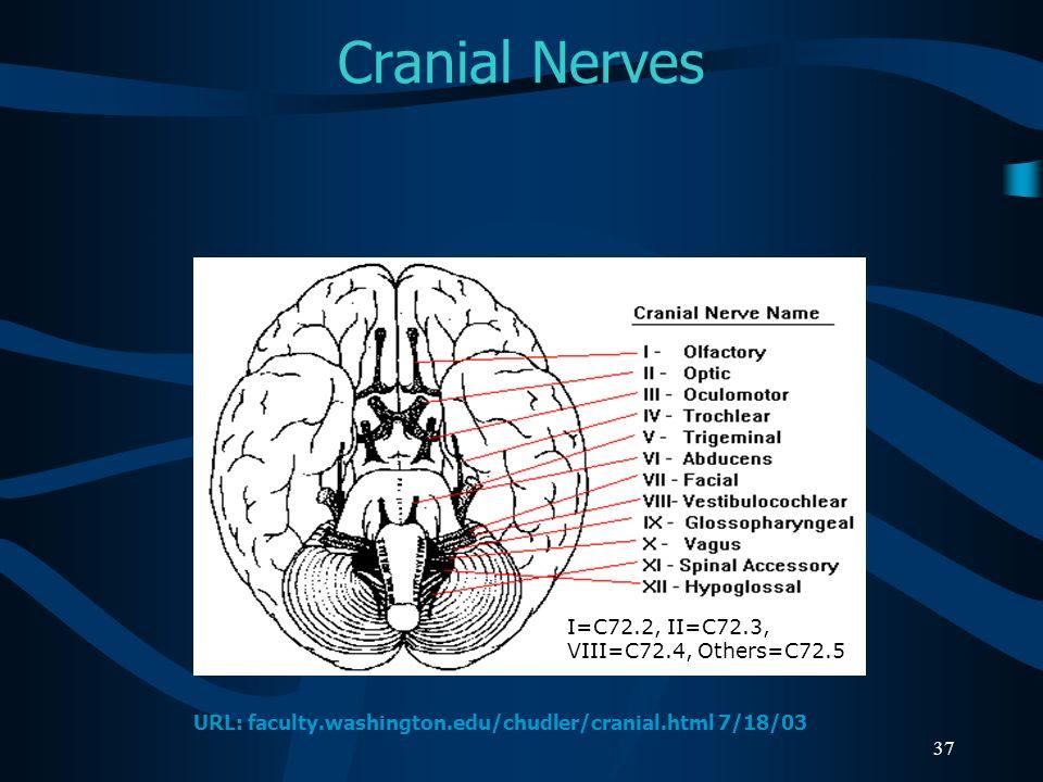37 Cranial Nerves I=C72.2, II=C72.3, VIII=C72.4, Others=C72.5 URL: faculty.washington.edu/chudler/cranial.html 7/18/03