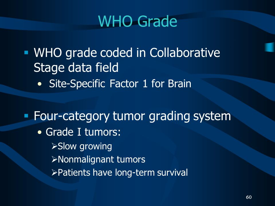 60 WHO Grade WHO grade coded in Collaborative Stage data field Site-Specific Factor 1 for Brain Four-category tumor grading system Grade I tumors: Slo