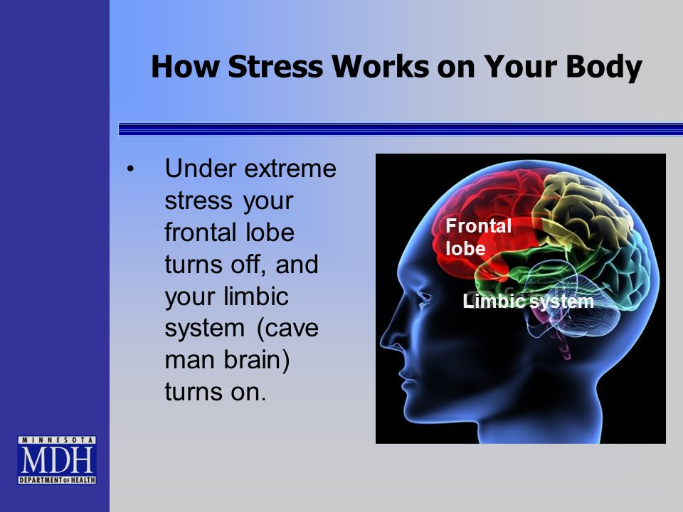 Threat & the Stress Response The Stress Response occurs Every Time our brain and body feel threatened Just thinking about something stressful can turn on the Stress Response When turned ON our brain starts to release over 1,400 chemicals and 30 different hormones that flood our whole body and help us in an emergency.