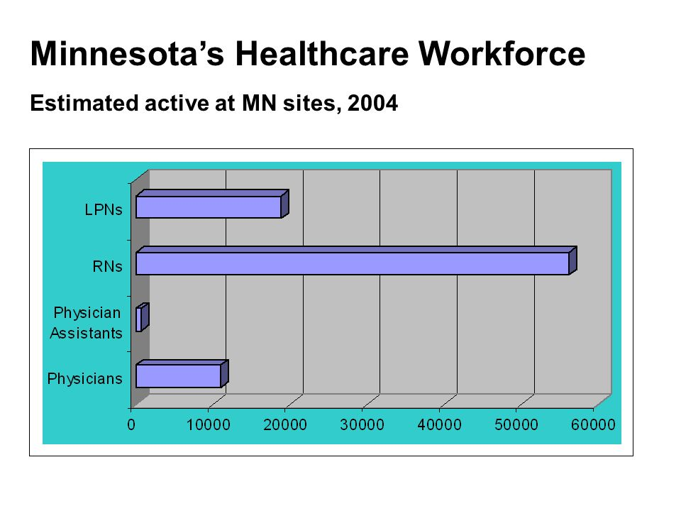 Minnesotas Healthcare Workforce Estimated active at MN sites, 2004