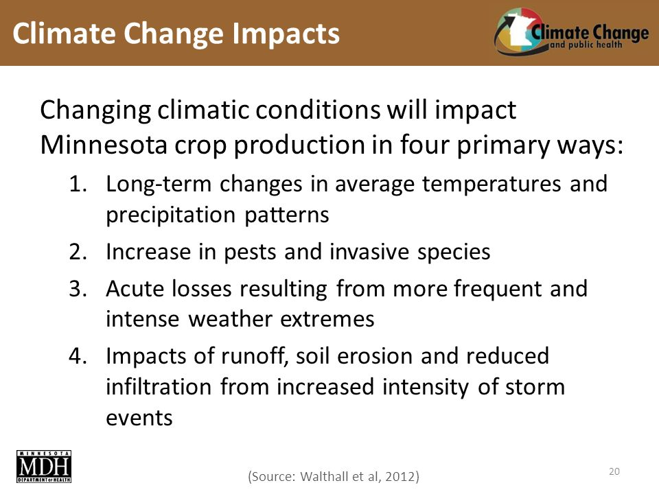(Source: Walthall et al, 2012) Changing climatic conditions will impact Minnesota crop production in four primary ways: 1.Long-term changes in average temperatures and precipitation patterns 2.Increase in pests and invasive species 3.Acute losses resulting from more frequent and intense weather extremes 4.Impacts of runoff, soil erosion and reduced infiltration from increased intensity of storm events Climate Change Impacts 20
