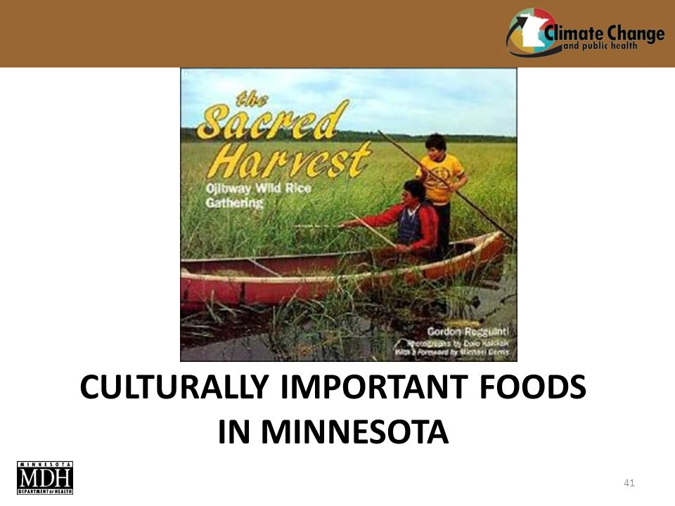 CULTURALLY IMPORTANT FOODS IN MINNESOTA 41