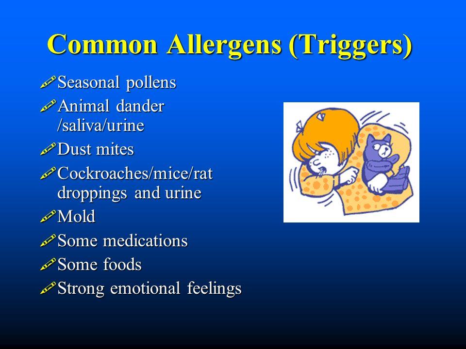 Common Allergens (Triggers) Seasonal pollens Seasonal pollens Animal dander /saliva/urine Animal dander /saliva/urine Dust mites Dust mites Cockroache