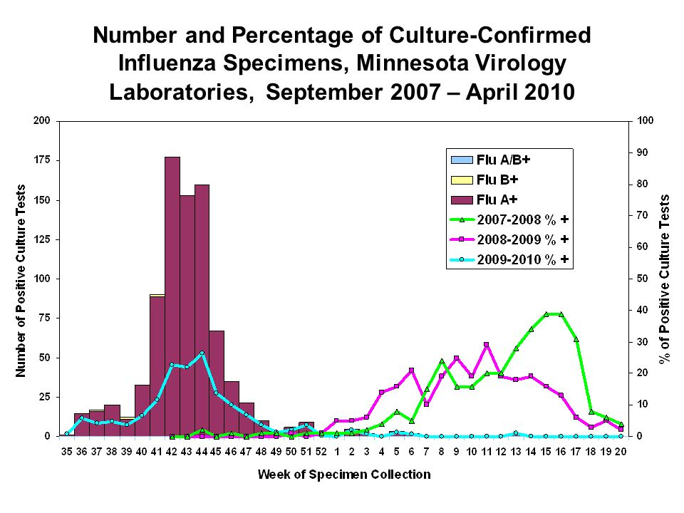 Number and Percentage of Culture-Confirmed Influenza Specimens, Minnesota Virology Laboratories, September 2007 – April 2010