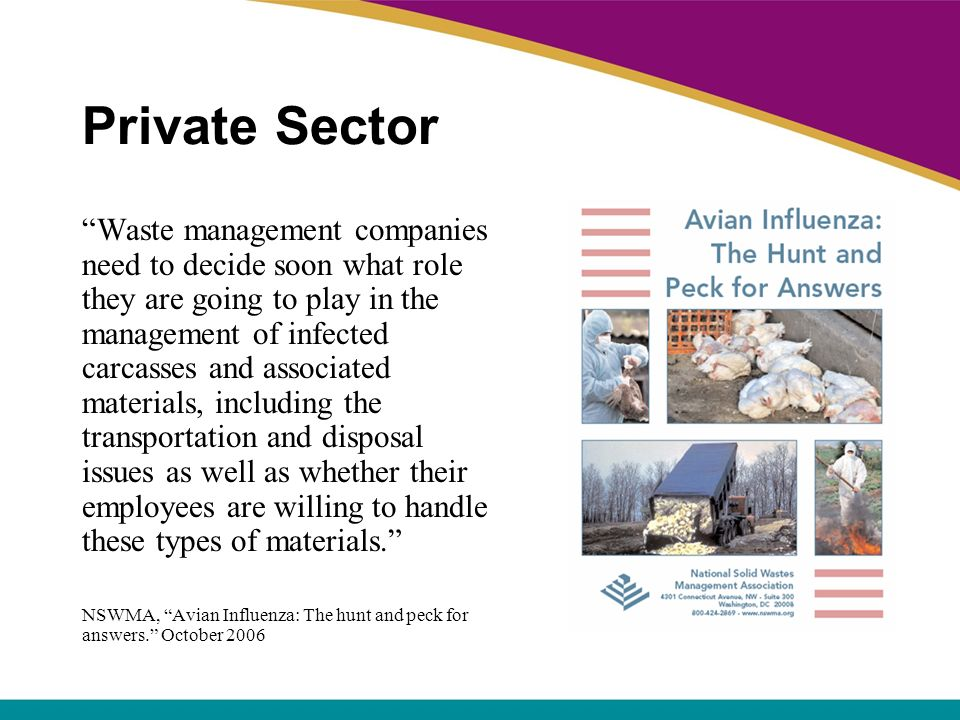 Private Sector Waste management companies need to decide soon what role they are going to play in the management of infected carcasses and associated