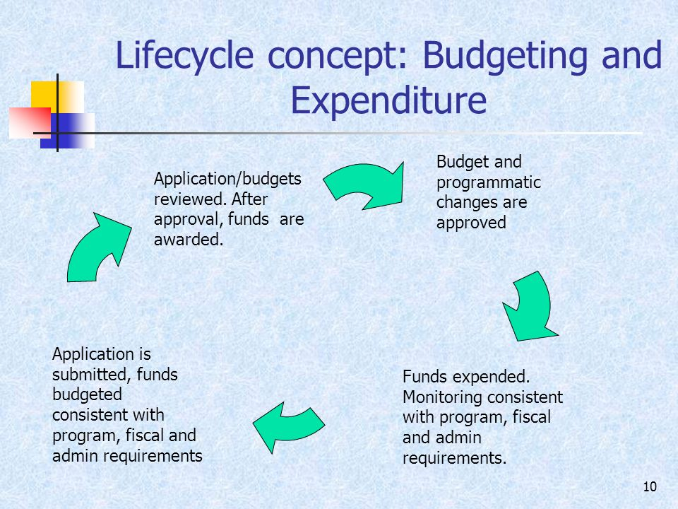 10 Lifecycle concept: Budgeting and Expenditure Application/budgets reviewed.