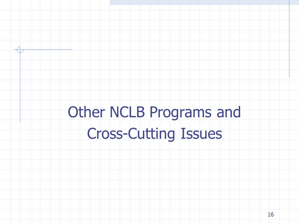 16 Other NCLB Programs and Cross-Cutting Issues
