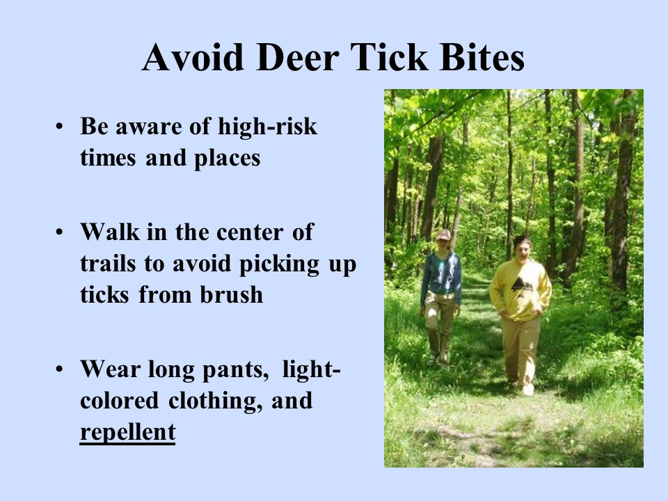 Avoid Deer Tick Bites Be aware of high-risk times and places Walk in the center of trails to avoid picking up ticks from brush Wear long pants, light-