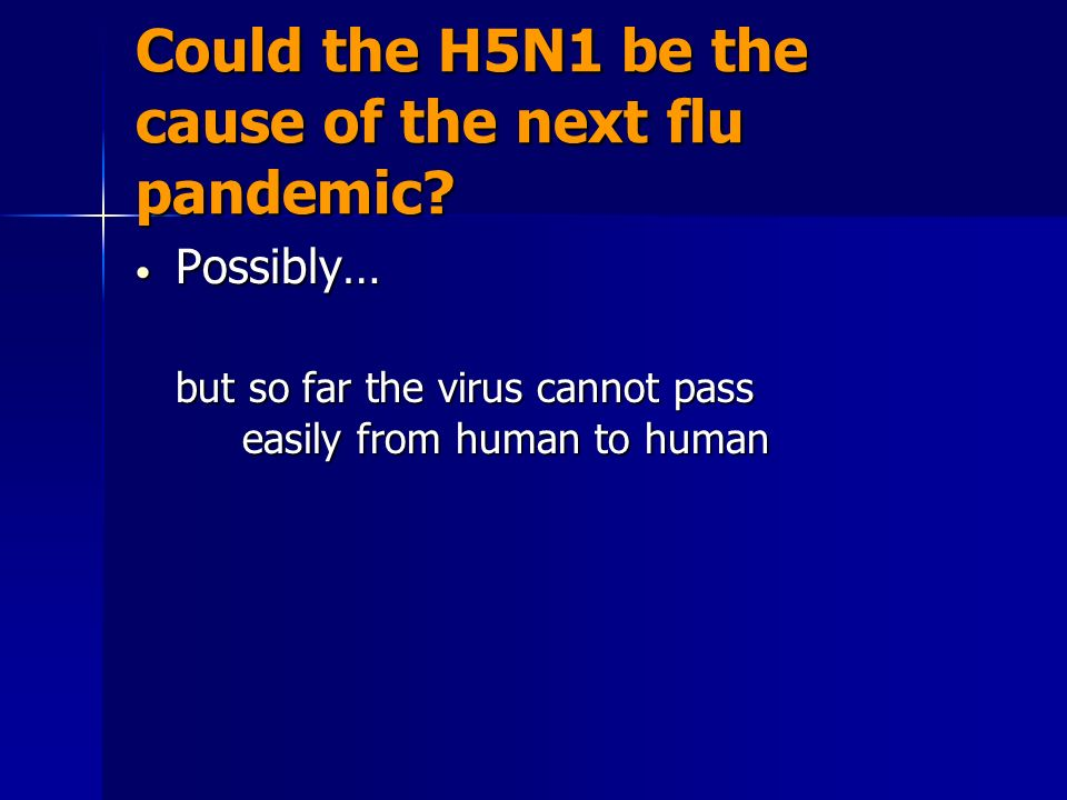 Could the H5N1 be the cause of the next flu pandemic? Possibly… Possibly… but so far the virus cannot pass easily from human to human