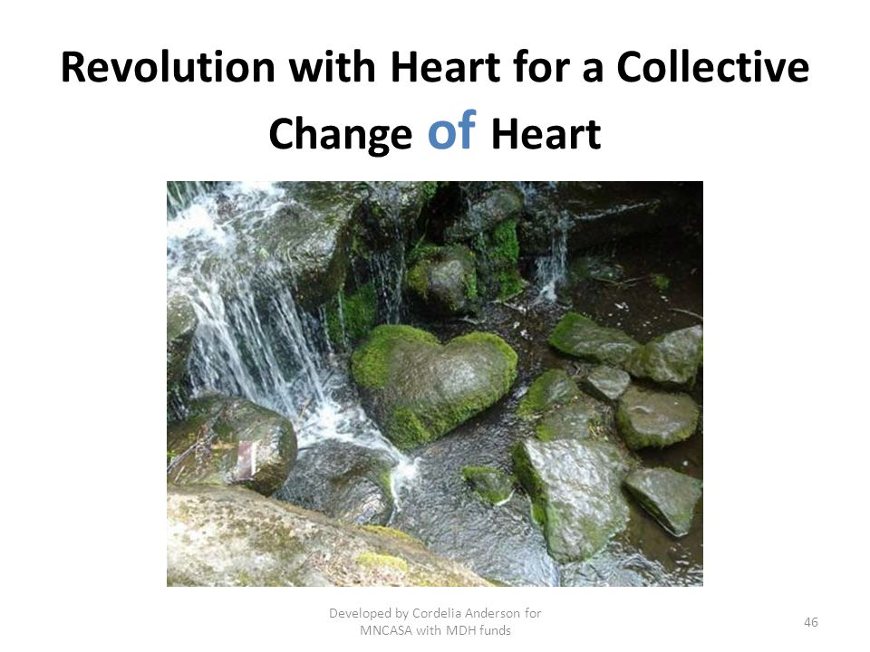 Revolution with Heart for a Collective Change of Heart 46 Developed by Cordelia Anderson for MNCASA with MDH funds