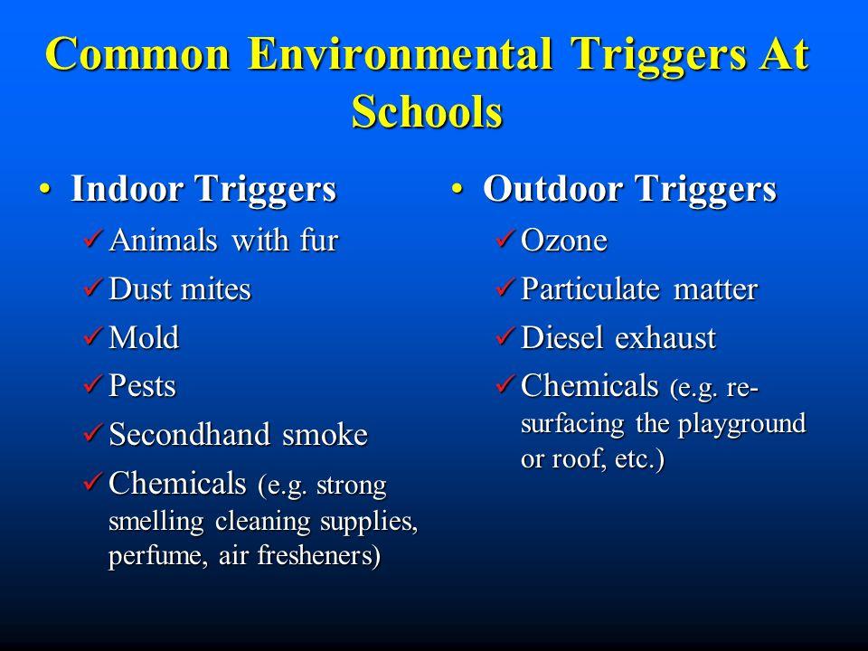 Common Environmental Triggers At Schools Indoor TriggersIndoor Triggers Animals with fur Animals with fur Dust mites Dust mites Mold Mold Pests Pests
