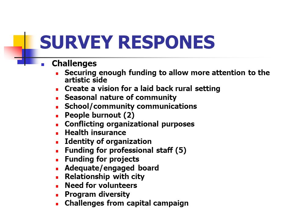 SURVEY RESPONES Challenges Securing enough funding to allow more attention to the artistic side Create a vision for a laid back rural setting Seasonal nature of community School/community communications People burnout (2) Conflicting organizational purposes Health insurance Identity of organization Funding for professional staff (5) Funding for projects Adequate/engaged board Relationship with city Need for volunteers Program diversity Challenges from capital campaign