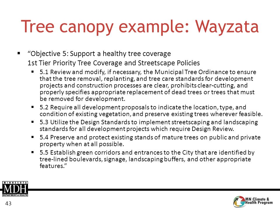 43 Tree canopy example: Wayzata Objective 5: Support a healthy tree coverage 1st Tier Priority Tree Coverage and Streetscape Policies 5.1 Review and m
