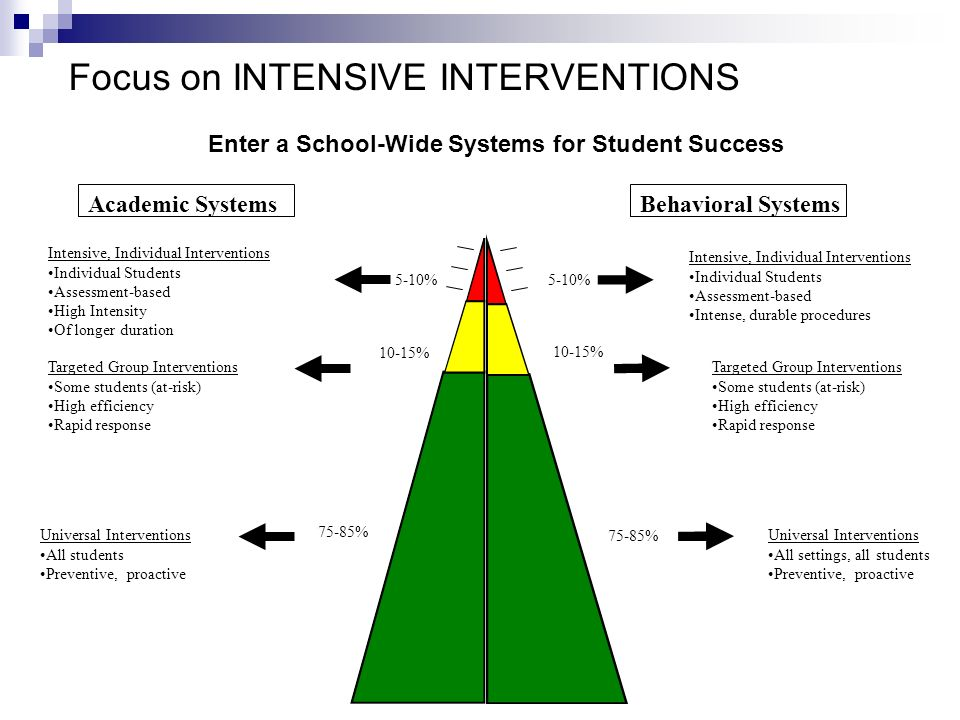 Academic SystemsBehavioral Systems 5-10% 10-15% Intensive, Individual Interventions Individual Students Assessment-based High Intensity Of longer dura