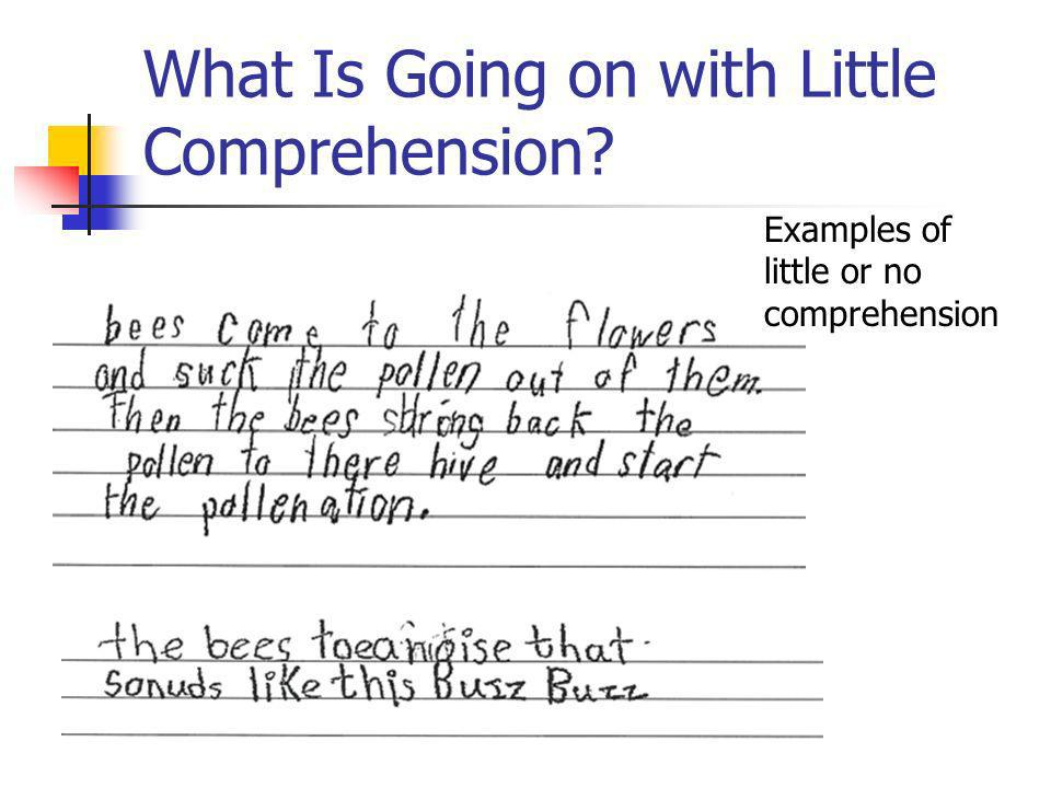 What Is Going on with Little Comprehension? Examples of little or no comprehension
