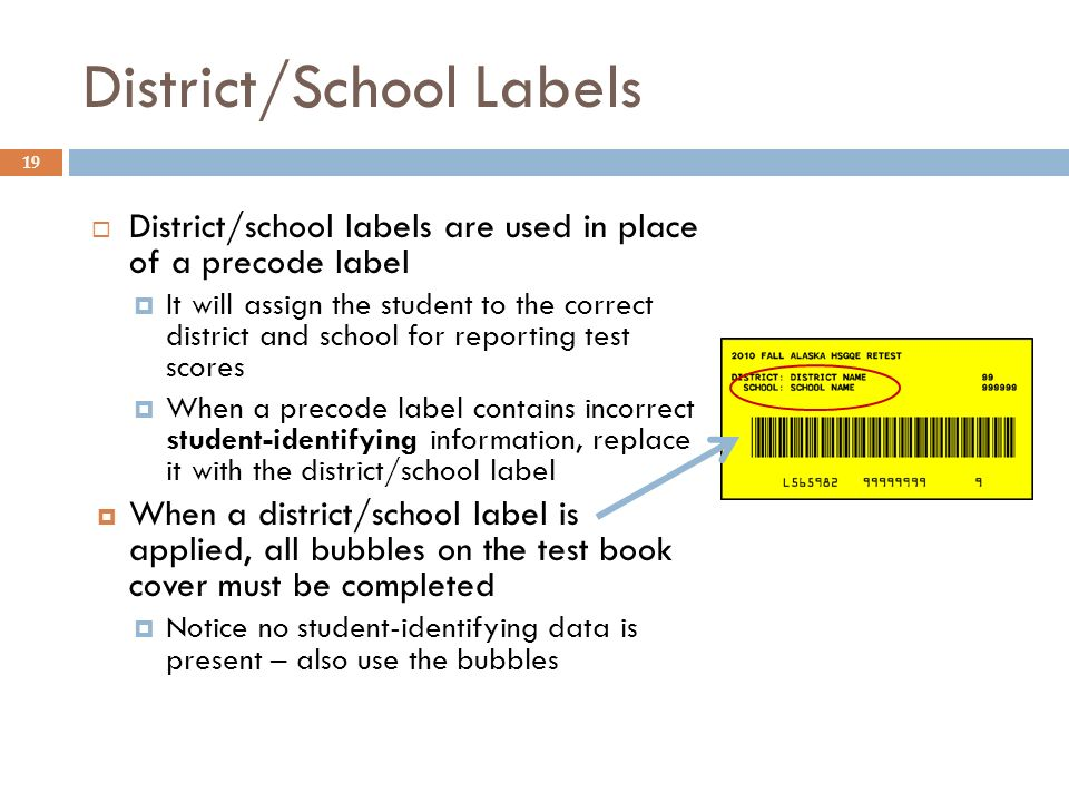 19 District/School Labels District/school labels are used in place of a precode label It will assign the student to the correct district and school for reporting test scores When a precode label contains incorrect student-identifying information, replace it with the district/school label When a district/school label is applied, all bubbles on the test book cover must be completed Notice no student-identifying data is present – also use the bubbles