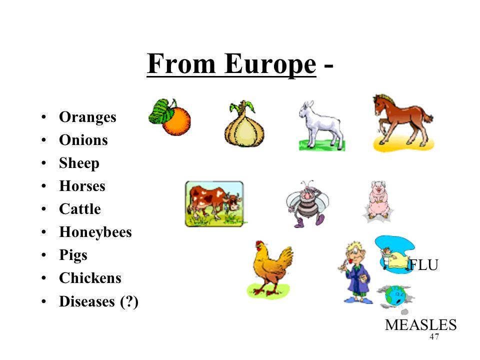 47 From Europe - Oranges Onions Sheep Horses Cattle Honeybees Pigs Chickens Diseases (?) FLU MEASLES