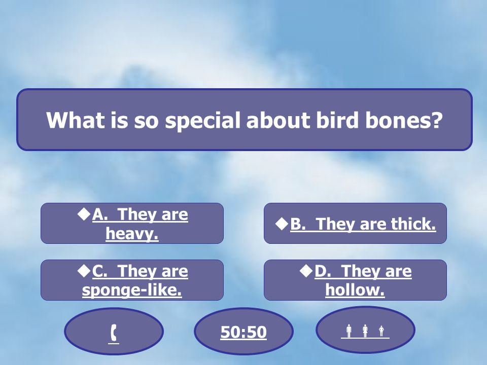 What is so special about bird bones. A. They are heavy.