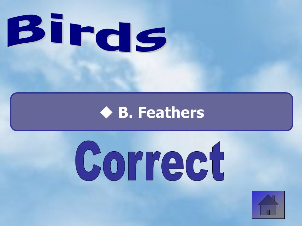 How many legs do birds have? A. Two C. Four B. Three D. None 50:50