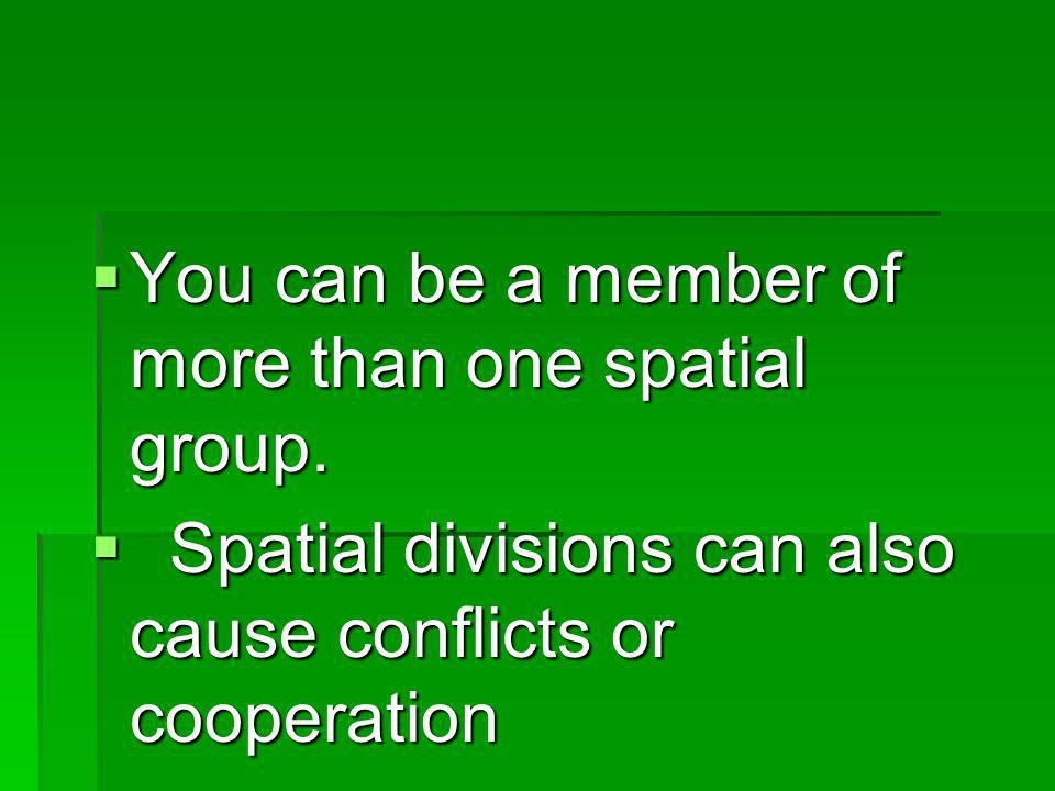 You can be a member of more than one spatial group. You can be a member of more than one spatial group. Spatial divisions can also cause conflicts or