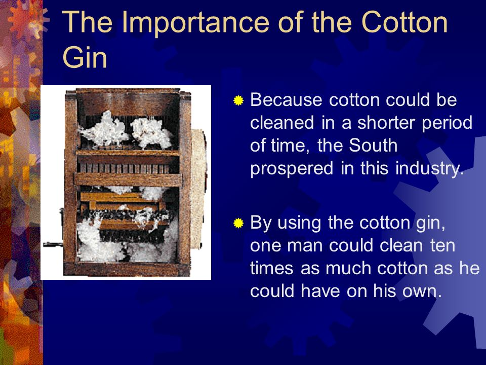 The Cotton Gin Eli Whitneys cotton gin allowed cotton to be easily separated from its seed in a short amount of time.