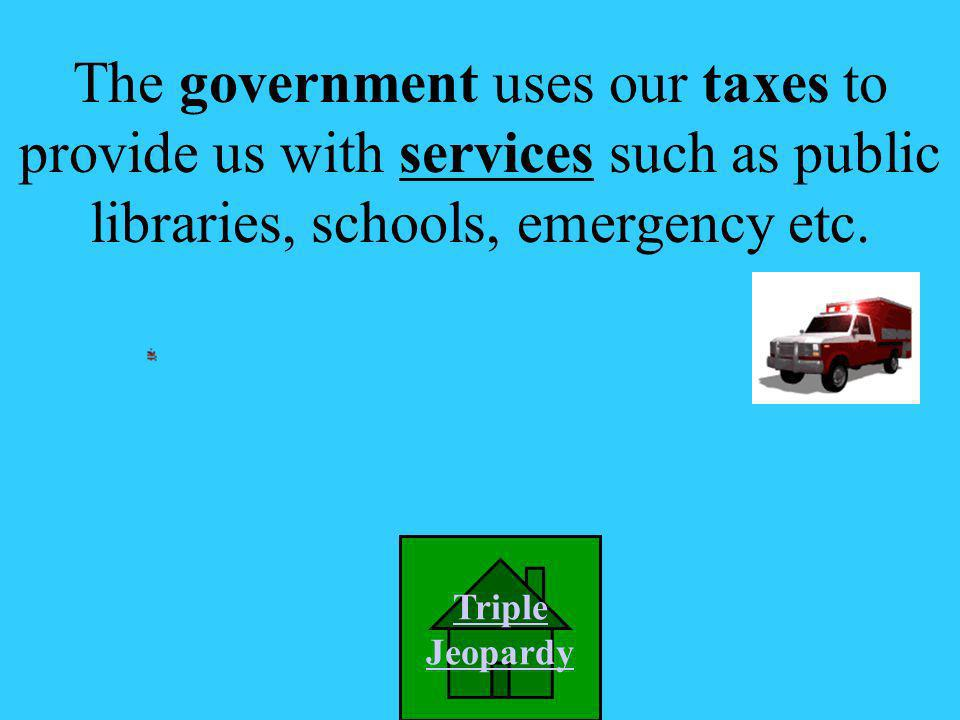 A. insurance The government uses our taxes to provide us with _______________.